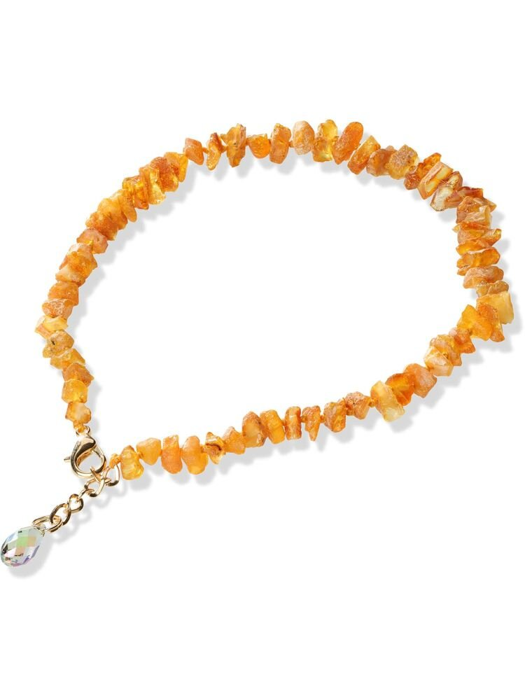 38cm Baltic Amber with Swarovski Dog Collar SC38